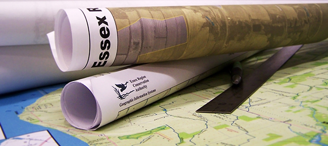 gis_map